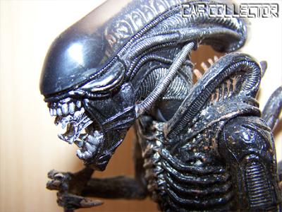 Alien Vs Prédator ! Alien5a